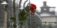 """""""Алеф"""" отбелязва Международния възпоменателен ден на Холокоста с онлайн събитие"""