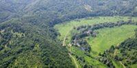 Доверието  в лечебните възможности на Странджа планина – над 50%